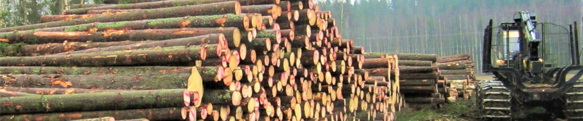 Puukauppa ja pihapuut